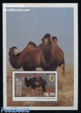 Bactrian Camel s/s