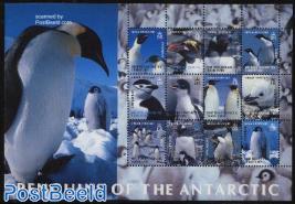 Penguin 12v m/s