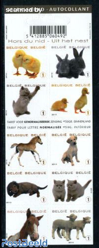 Young animals 10v in foil booklet