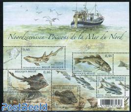 Northsea fish s/s