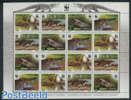 WWF, Crocodiles m/s