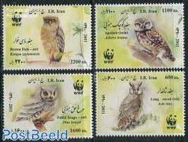 WWF, Owls 4v