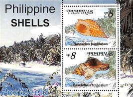 Shells s/s