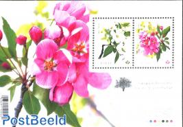 Crabapple blossoms s/s