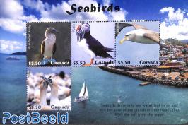 Seabirds 4v m/s