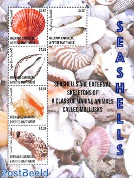 Seashells 5v m/s