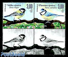 Birds 2v+2 tabs [+]