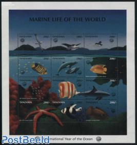 Int. Ocean year 12v m/s