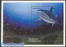 White shark s/s