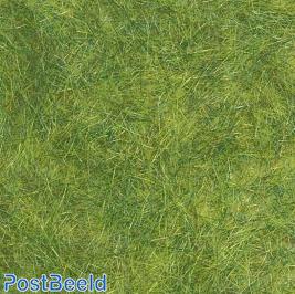 Wild Grass Flocking ~ Spring Green