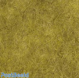 Wild Grass Flocking ~ Grain Field