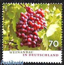 Winery in Germany 1v