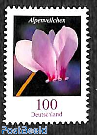 Definitive, flower 1v