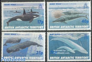 Whales 4v
