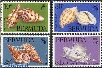 Shells 4v