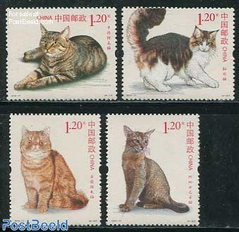 Cats 4v