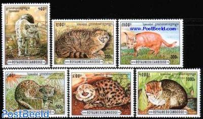 Cats 6v