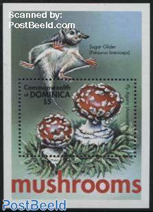 Mushrooms s/s, Armanita muscaria