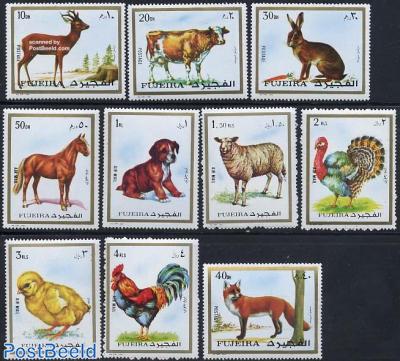 Animals 10v
