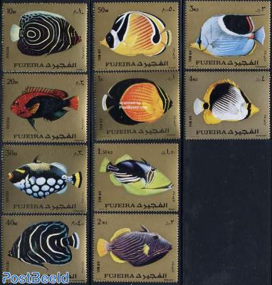 Fish 10v