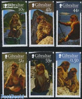 Monkeys 6v