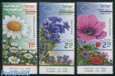 Winter Flowers 3v