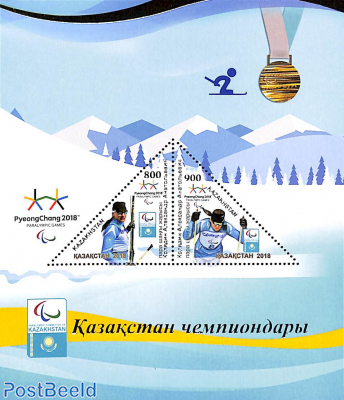 Paralympic winter games s/s