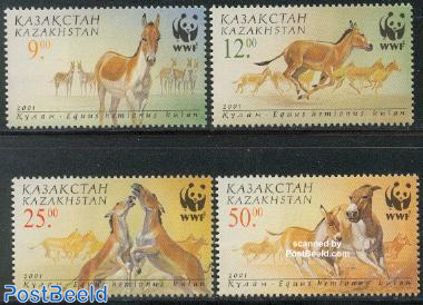 WWF, Donkeys 4v