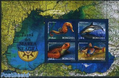 Black sea fauna s/s
