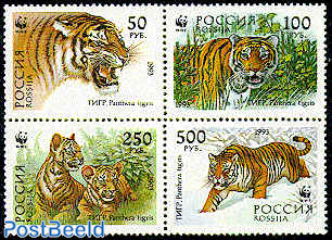 WWF, Tigers 4v [+] or [:::]