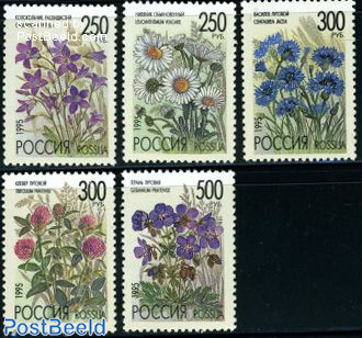 Field flowers 5v