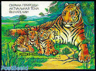 Tigers s/s