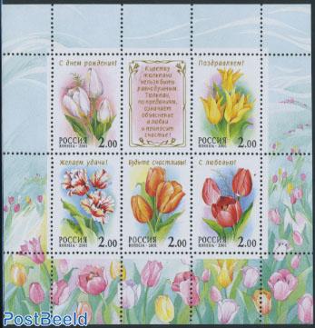 Tulips s/s