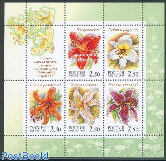 Lilies 5v m/s