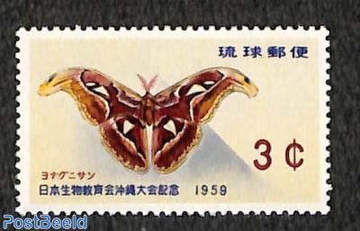 Butterfly 1v