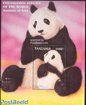 Panda bear s/s
