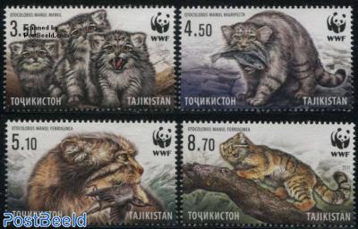 WWF, Manul 4v