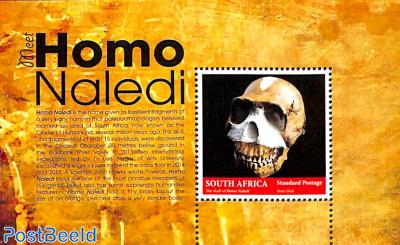 Homo Naledi s/s