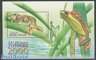 Junass 2000, frogs s/s