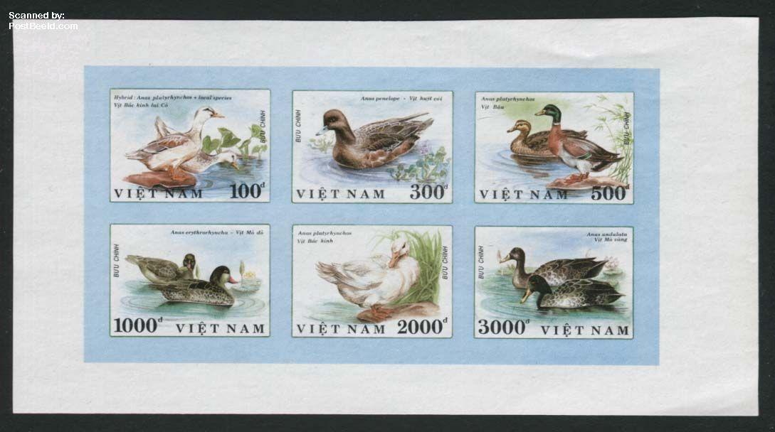Ducks 6v [++], imperforated
